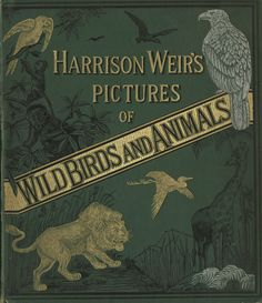 1881 Harrison Weirs pictures of wild birds and animals book