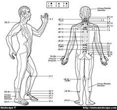 Akupunktura pro chronické bolesti zad