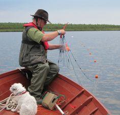 Aksulla verkoilla Fishing, Sports, Sup Fishing, Hs Sports, Sport, Peaches, Pisces