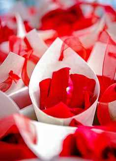 Rose Petals for Rose Petal Toss   Rose Petals available  www.flyboynaturals.com  in over 100 eco-friendly colors Jeff Tisman Photography   blog.theknot.com