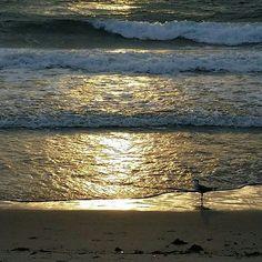 Yesterday morning.  #delraybeach #imaginedself # sunrise #beachlife
