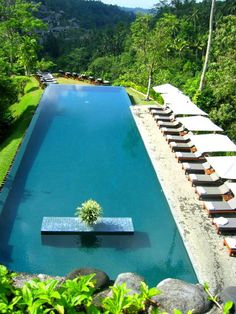 """""""Floating"""" swimming pool in the middle of the jungle of Ubud, Bali"""