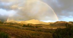 Rainbow at Orange Grove Farm