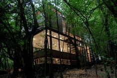 Surrounded by Nature   The Apolo 11 House by Parra + Edwards Arquitectos