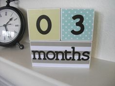 Age Blocks  Baby Photo Prop  Monthly Pictures  by bitsyblocks