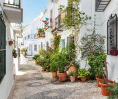 A beautifully written article about one of our favourite towns: Frigiliana