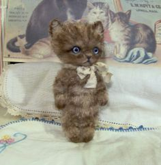 SPECIAL ORDER RESERVED  Mini Brown Havana Kitty Cat by SReetzBears, $85.00