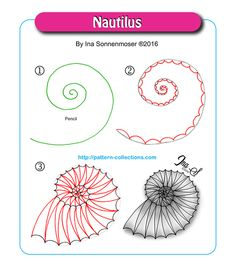 Nautilus by Ina Sonnenmoser