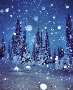 Meanwhile, at @whitewaterskiresort... : @syeed72    #wh2o #iheartwh2o #explorekooteaylake #explorebc #explorecanada #nelsonbc #kootenaylake #kootenaylife #mountainlife #pnw #pacificnorthwest #pnwonderland #cascadiaexplored #getoutside #getoutthere #travel #adventure #mountains #snow #ski #snowboard #pow #powder    www.nelsonkootenaylake.com