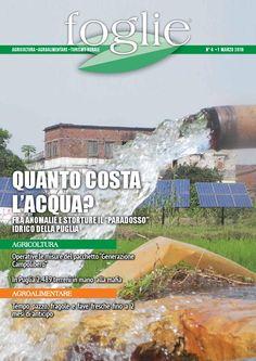 FOGLIE n.04/2016  AGRICOLTURA AGROALIMENTARE TURISMO RURALE