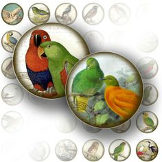 Victorian birds ephemera digital collage bottle cap 1 inch circle jewelry making paper supplies altered art download