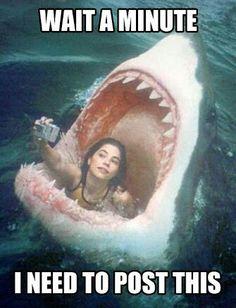 Selfie fever