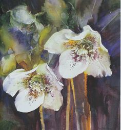 Ann Blockley I Hellebores I From Watercolor Textures Book I Published 2007 Watercolor Projects, Watercolor Artists, Watercolor Landscape, Abstract Watercolor, Watercolor And Ink, Watercolour Painting, Watercolor Flowers, Watercolours, Art Themes