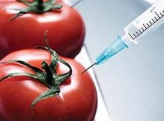 GMO Foods: What They Are and How You Can Avoid Them | Non GMO Project