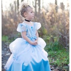 Costco: Cindi Storybook Dress Up Set Fairy Godmother, Little Girl Fashion, Every Girl, Rose Buds, Beautiful Gowns, Playing Dress Up, Cinderella, Halloween Costumes, Flower Girl Dresses