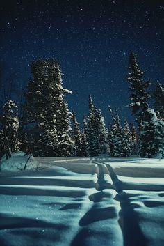 Starry winter night in Siberia, Russia  #travel #winter #adventure