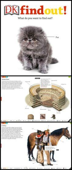 impressive online encyclopedia for kids, DKfindout!