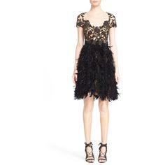 Embroidered Illusion & Feather A-Line Cocktail Dress
