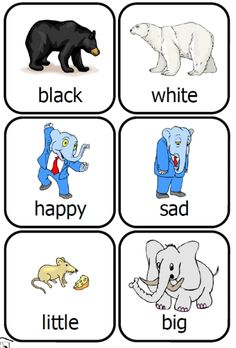 preschool fun printable free opposites cards with pictures for kids