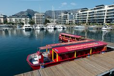 Guest Post: Cape Town City Sight Seeing Harbour Cruise