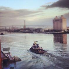 Tug boat on the Savannah River
