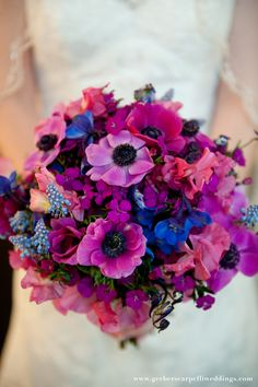 Wildflower bouquet Shocking colors that pop in electric blue delphinium and rich violets Floral Bouquets, Wedding Bouquets, Blue Delphinium, Jewel Tone Wedding, Best Wedding Planner, Purple Wedding Flowers, Wedding Honeymoons, Gerbera, Flowers Nature
