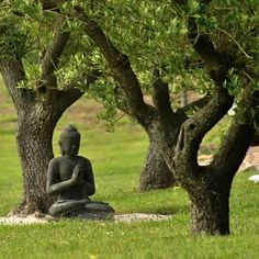 Buddha's Garden Of Zen Art Buddha, Buddha Buddhism, Meditation Garden, Buddha Meditation, Mindfulness Meditation, Religion, Little Buddha, Dalai Lama, Statues