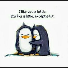 Lottle -  friendship quotes