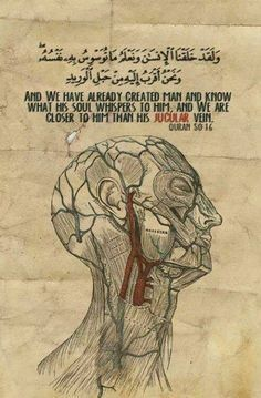 The Quran speaks of the jugular vein, how would anyone know about this vein in the desert, 1500 years ago, unless it was the word of God, the creator.