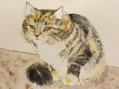My first cat watercolor - dear departed Sweetiepie