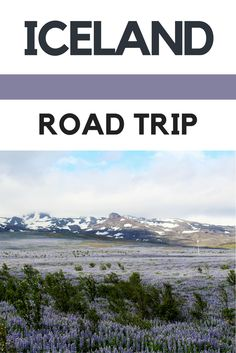 Road Trip: 10 Places you need to visit in Southern Iceland | Self-drive road trip itinerary incl. the Golden Circle, the Jokulsarlon Glacier Lagoon, Vik and more.