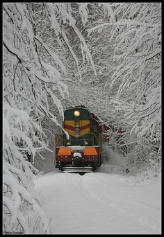 The FIRST train going through fully frozen tree branches with cracking and crumbling. Snow covered rails. ***** Referenced by 1 Dollar Web Hosting (WHW1.com): WebSite Hosting - Affordable, Reliable, Fast, Easy, Advanced, and Complete.©