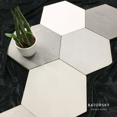 #batorsky #concrete #tiles #design #hexagonal