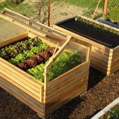 Die 341 Besten Bilder Von Hochbeete In 2019 Vegetable Garden