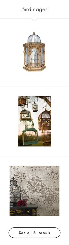 """Bird cages"" by new-york-sweetheart ❤ liked on Polyvore featuring decor, fillers, birdcage, birds, backgrounds, phrase, quotes, saying, text and pictures"
