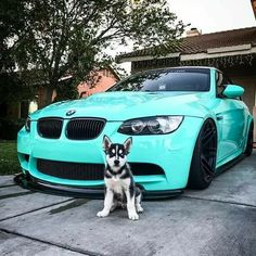 BMW E92 M3 teal