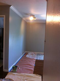 Kelly moore mud pots eggshell gray paint swiss coffee flat ceiling