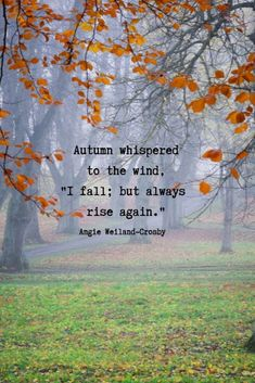fall quotes inspirational nature quotes an enchanted picture of nature with autumn leaves and trees Autumn whispered to the wind I fall but always rise again Autumn Quotes Inspirational, Autumn Quotes And Sayings, Fall Time Quotes, Fall Season Quotes, Wild Things Quotes, Cute Autumn Quotes, Mature Quotes, Autumn Poem, Leaf Quotes