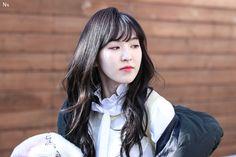 레드벨벳 Red Velvet // WENDY 웬디 (손승완 Son Seung Wan)