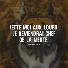 Best Quotes, Life Quotes, Sarcasm Only, Philosophy Quotes, French Quotes, Bad Mood, Some Words, Positive Attitude, Sentences