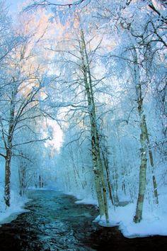 Icey Dawn