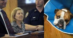 Jail term for NY woman who blinded dog by throwing ammonia on its face because it barked too much!