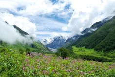 Valley of flowers, Garhwal Uttarakhand - India. One of the best treks for trekking enthusiasts. Trekkers from all over the world adore this place make it a point to visit it once in a lifetime.