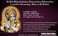 Know the meaning of sanskrit slok of Lord Krishna - 'Kararavindena Padaravindam'