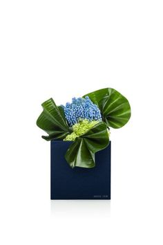 """""""The 'Amen!' of Nature is always a flower"""" - OLIVER WENDELL HOLMES - (Armani Fiori)"""