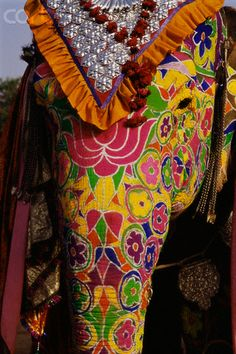 Indian Elephant Painted for Festival