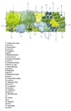 Ready-made border Spring colour Landscape Plans, Landscape Design, Vegetable Garden Planning, Vegetable Gardening, Herbaceous Border, Garden Design Plans, Planting Plan, Shade Flowers, Spring Colors