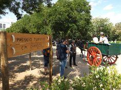 Campomaiornews: Passeio Turístico em Carroça leva turistas ao cent...
