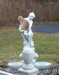 a statue for #Caturday • #TeamCatMojo
