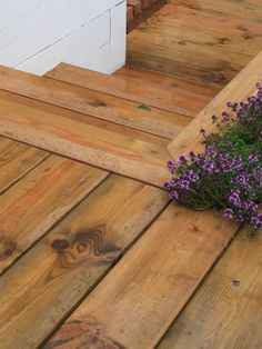 wooden decking transition from the house